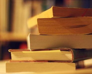 """""""Wie man über Bücher spricht, die man nicht gelesen hat"""" von Pierre Bayard"""