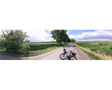 TOUR: Der Ilmenau-Radweg & Die Lüneburger Elbmarsch