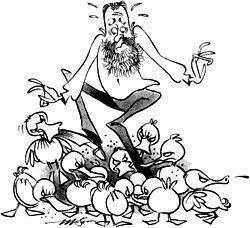 Amerikanische Redewendungen - Teil 20: nibbled to death by ducks