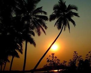 Traveling: Vorbereitungen für Indien - Teil 2: Das Visum - e-Tourist Visa (eTV)