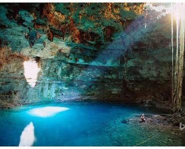 Erkunde mit uns die Unterwasserwelt Yucatáns