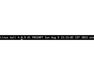 Raspberry Pi: Wie wird die neue Kali Linux 2.0 Sana Version installiert und mit SSH in Betrieb genommen?