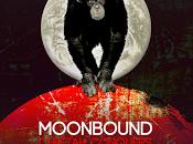 Moonbound Cheetah Conquers Moon