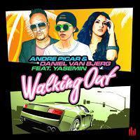 Andre Picar & Daniel Van Bjerg feat. Yasemin - Walking Out