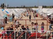 IG-Ticker: Bürger fordert Refugee-Check
