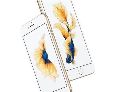Drei essenzielle Zubehörteile für Ihr iPhone 6s