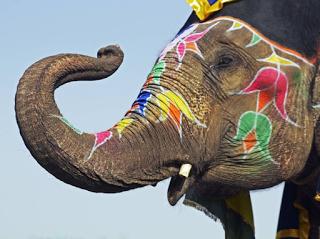 Aventin Blog: Der wilde Elefant • Allegorie • Späte Erkenntnis [del.icio.us]