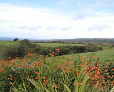 Burren Way 02: Fanore bis Doolin