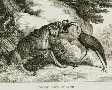 Aventin Blog: Vom Wolf und dem Kranich • Fabel von Aesop [del.icio.us]