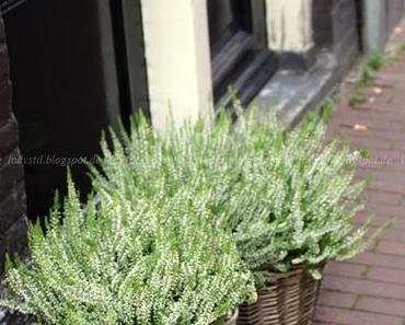 Amsterdam Travel Tipps plus ein neues Sofa - mehr geht nicht