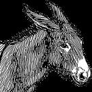 Der mit Salz beladene Esel • Fabel von Aesop