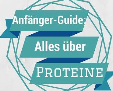 Anfänger-Guide: Alles über Proteine