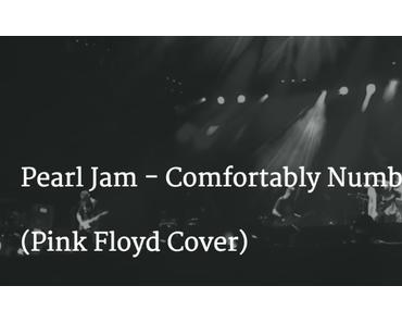 Pearl Jam spielen Comfortably Numb von Pink Floyd
