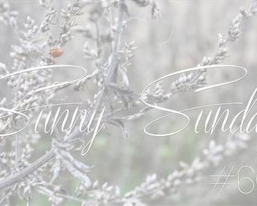 Sunny Sunday #60