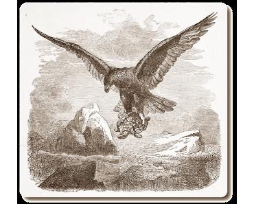 Der Adler und die Schildkröte • Torheit • Fabel von Aesop