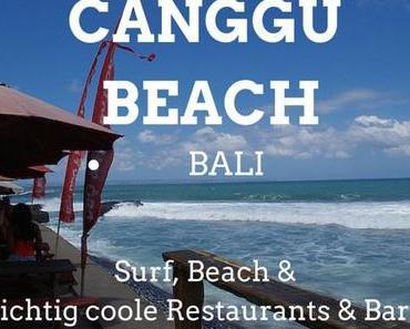 10+ Tipps wo und was du in Canggu (Bali) erleben kannst