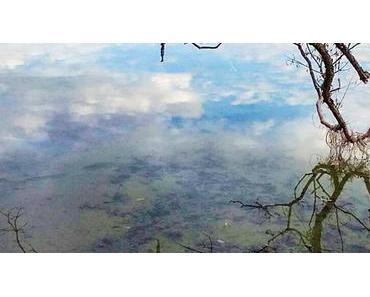 Bild der Woche: Erlaufsee Spiegelbild Hochformat