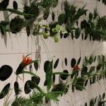 Ein vertikaler Garten im Wohnzimmer