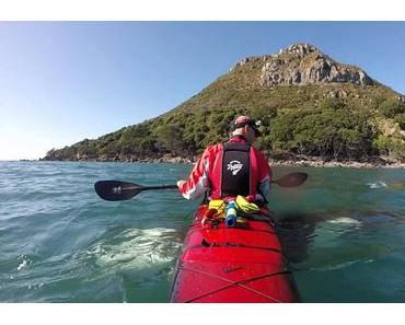 Neuseelands Meeresfauna