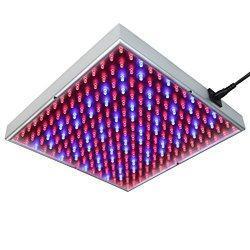 LED Pflanzenlampe für Zuhause
