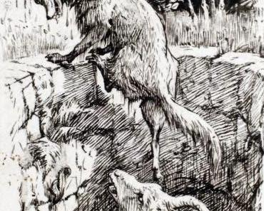 Der Fuchs und der Bock | Von unüberlegtem Handeln | Fabel von Aesop