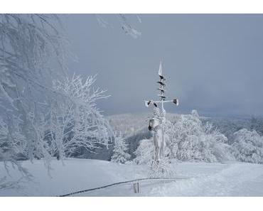 Winterliche Traumzeit auf dem Schauinsland: Die Holzskulpturen von Thomas Rees