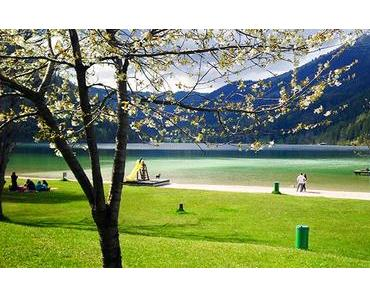 Bild der Woche: Erlaufsee im Frühling