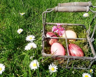 Ostereier – natürlich bunt!