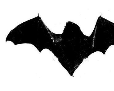 Ehrentag der Fledermaus – der National Bat Appreciation Day in den USA