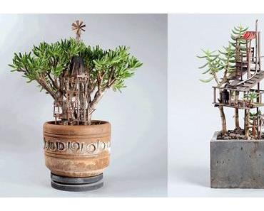 Für Schreibtischabenteurer – Das Baumhaus für Zimmerpflanzen!