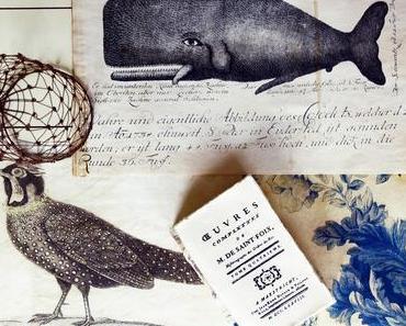 Nostalgische Kunstdrucke: der Wal, Flora und Meleagris Satyra