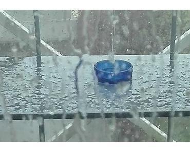 Foto: Kein Frühling auf dem Balkon