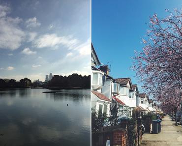 7 Monate in London.