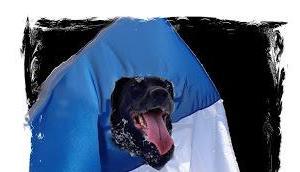 französische Staat ignoriert Hundeverrücktheit seines Volkes