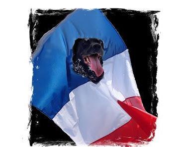 Der französische Staat ignoriert die Hundeverrücktheit seines Volkes