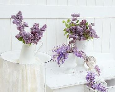 Flieder & Blauregen - Blütenträume in Violett