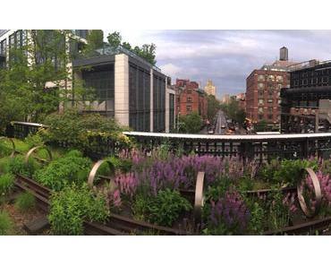 Mein Lieblingsplatz in New York – Der High Lane Park