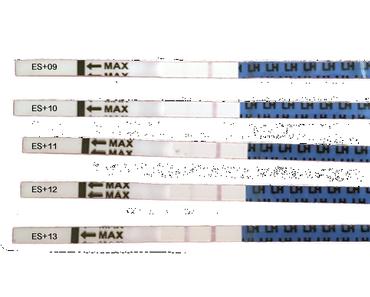 Orakeln mit Ovulationstests: Das musst du wissen