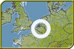 Meteorologen erklären gigantische Ringe auf Wetterradar