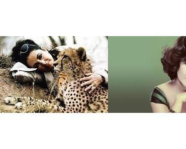 Elizabeth Taylor . Ein Nachruf in Bildern .
