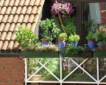 Foto: Mein Balkon im Forum Lüdinghausen