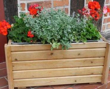 Neue Pflanzkübel verschönern unseren Innenhof