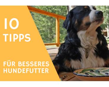 10 Tipps wie du das Futter von deinem sofort Hund aufwerten kannst
