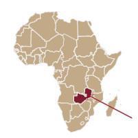 Unterstütze Frauen in Zambia durch den Kauf von Organyc-Biobinden