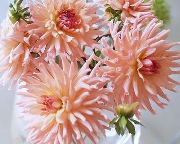 Friday-Flowerday 39/16
