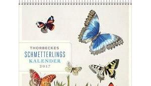thorbeckes schmetterlingskalender