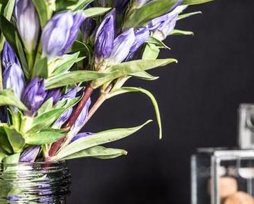 Flowers | Mal wieder was Blaues in der Vase: Enzian!