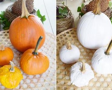 Wie ihr orangene Kürbisse in weiße Schönheiten verwandelt - DIY