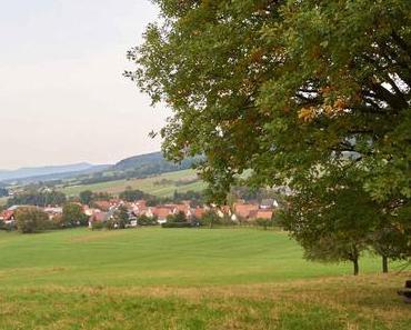 Wandern im Hammerbachtal