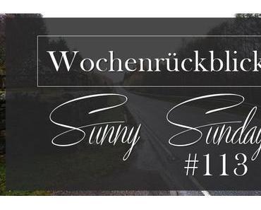 Wochenrückblick #113